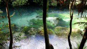 Blue Springs 07